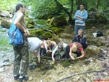 сотрудники кафедры руководят учебно-полевыми практиками по экологии,