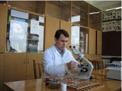 Кафедра ботаники и физиологии растений и биотехнологий / Научная работа